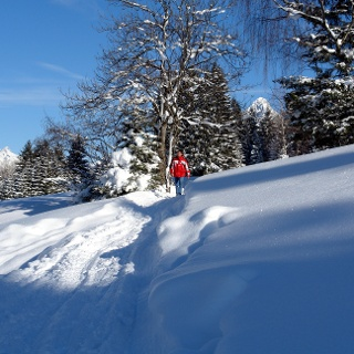 Winterwandern in  Raggal-Marul
