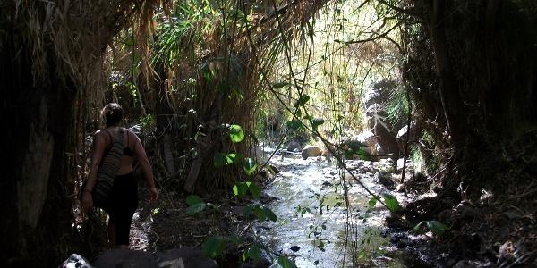 der Wasserfallweg