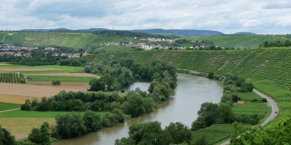 Blick auf Neckar