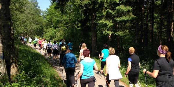 Nordic Walking in Dellach