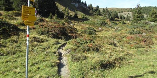 Wanderweg zum Weisshorn