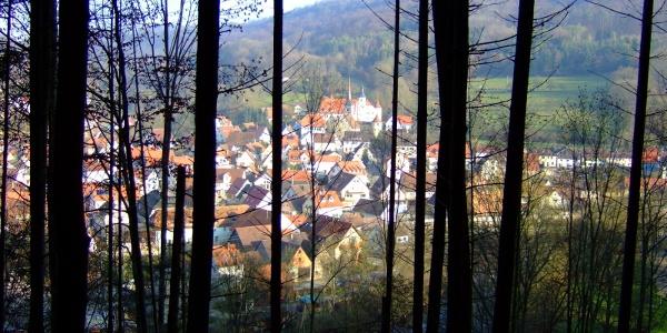 Durch die Bäume fällt der Blick auf Braunsbach.