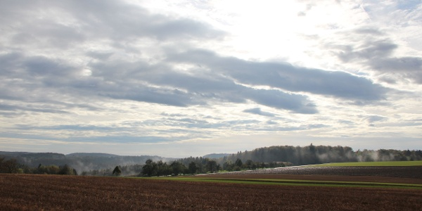 Wittlinger Felder