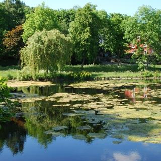 Frankenberger Teich