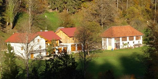 Speringbauer 535m