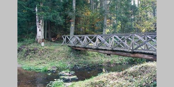 Diese Brücke bringt uns sicher auf die andere Seite des Flusses.