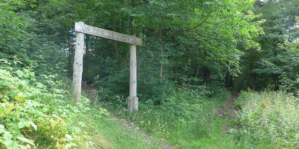 Eingang Walderlebnispfad