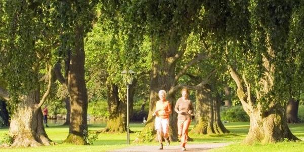 Laufen auf dem Gesundheits- und Fitness-Parcours Bad Driburg 5