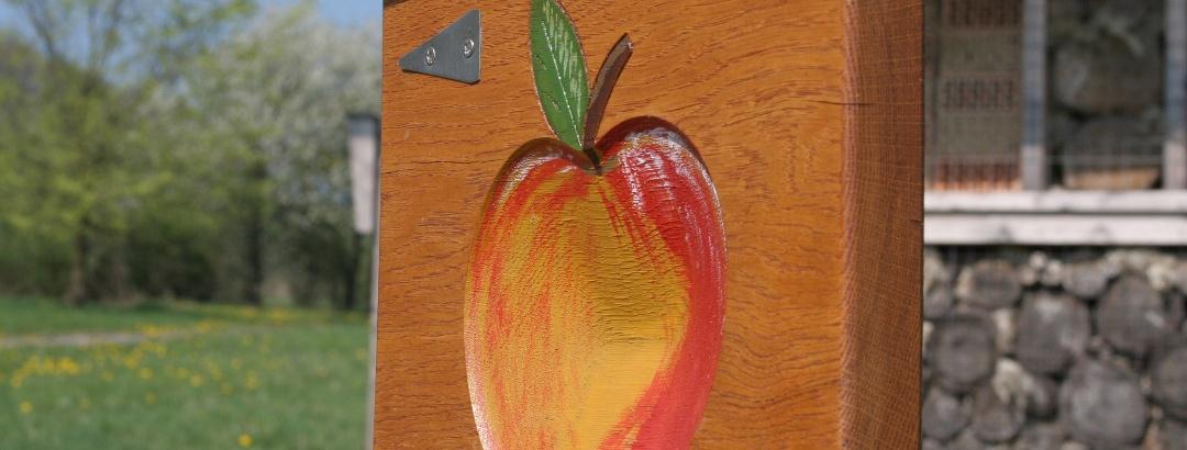 Der Apfel weist den Weg