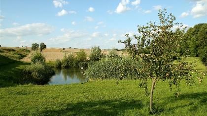 Die Hochfläche am Brachberg bei Großeibstadt ist landschaftlich sehr reizvoll.