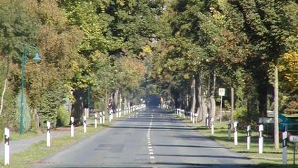 Einen schnurgerade Straße als Mittelachse in der Marsch
