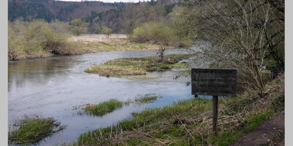 1. Donauversickerung