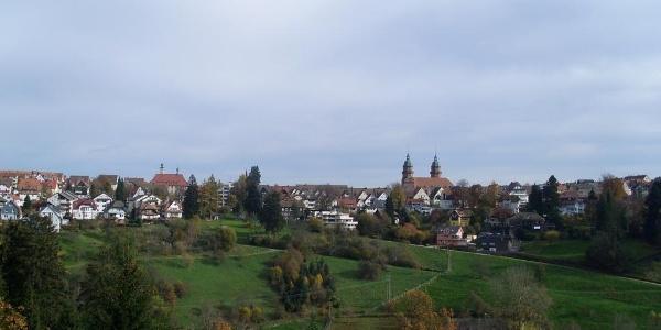Blick oberhalb vom Bärenschlössle Richtung Freudenstadt