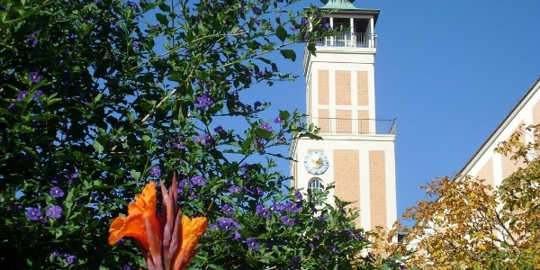 Der Rathausturm
