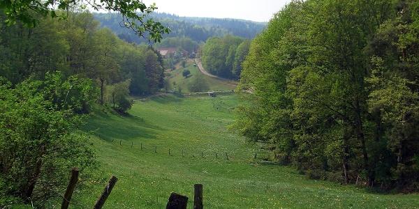 Mit Blick auf den Wilensteiner Hof wandern wir hinunter ins Karlstal.