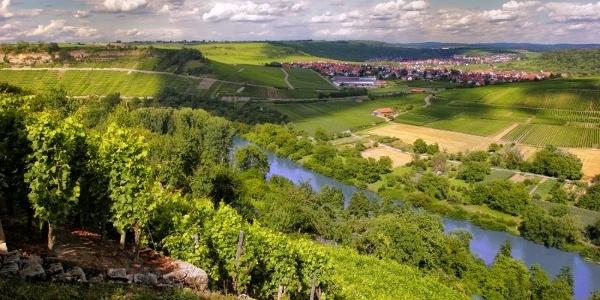 Hessigheim und die Felsengärten