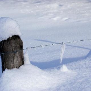 Winter in der Schönau