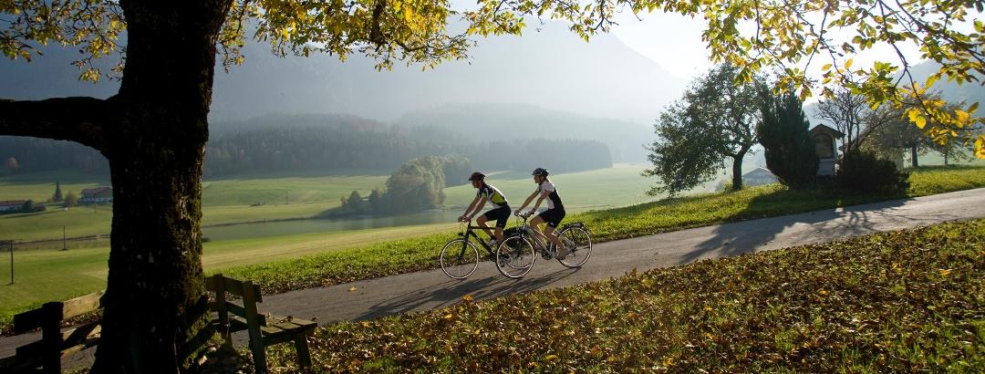 Nur Genießer fahren Fahrrad - Radtouren.