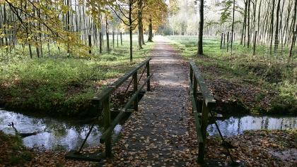 Wanderweg Tiergarten
