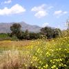 Monte Veneretta-Massiv
