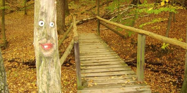Lustige Baumgesichter lachen uns in der Steckeschlääferklamm an