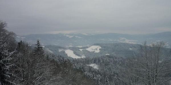 Blick Richtung Feldberg