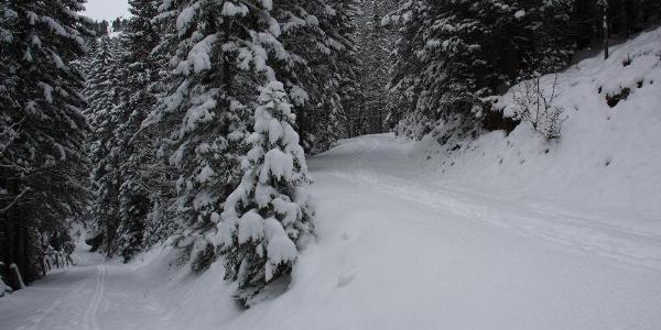 Tourengeher gehen links. Schneeschuhgeher und Wanderer nehmen der rechten Weg.