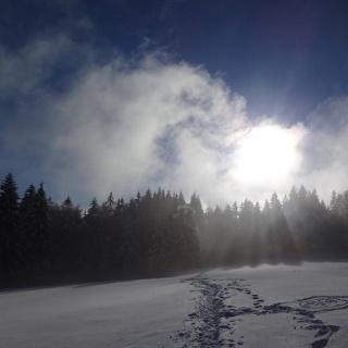 Winter-Wonderland 3