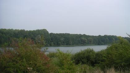 Der Blick vom Hochufer des Neumühler Sees.