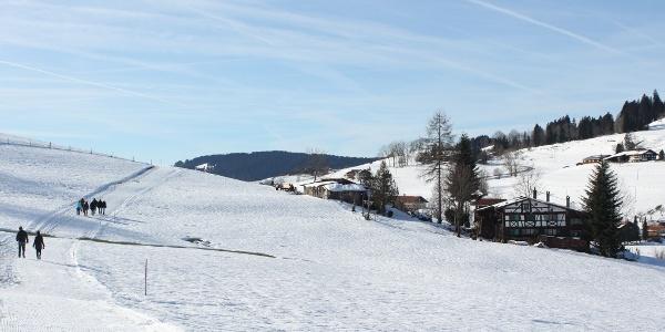 Gewalzte Trasse Richtung Saneberg