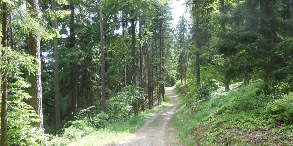 Wanderweg um den Eixendorfer Stausee
