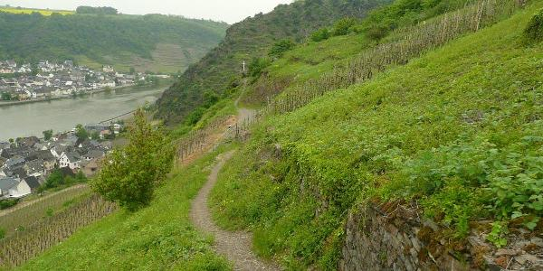Alken    Wanderweg an der Burg Thurant.