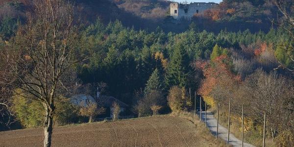 Blick zur Ruine Merkenstein