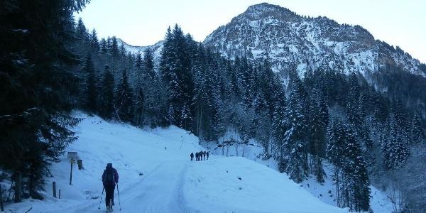 Rodelbahn unter der Bergwerksseilbahn und vor dem Kleberkopf