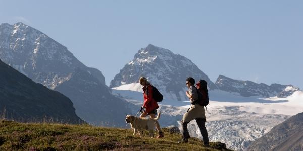 Wanderung auf der Bielerhöhe mit Blick auf den Piz Buin (3.312 m)
