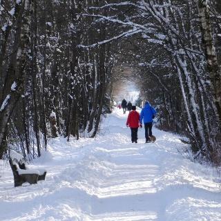 Winterwanderweg in der Kendlmühlfilze
