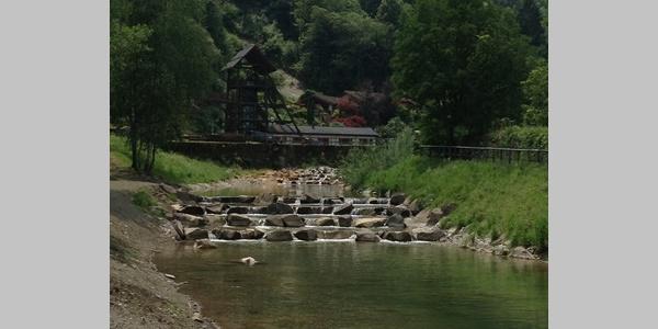Rio Mandola