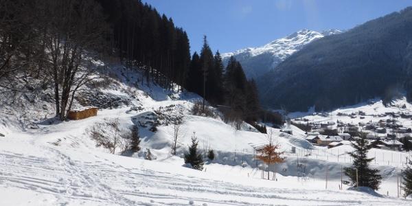 Beginn Kilknerwald