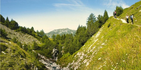 Wanderweg oberhalb von Lenzerheide