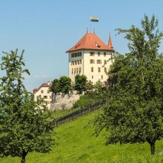 Das Schloss Heidegg