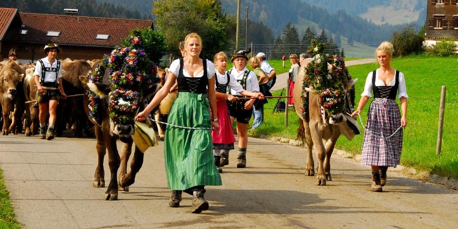 Cattle drive in Ofterschwang Gunzesried