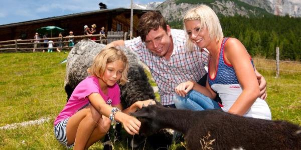 FAMILIENWANDERWEG Dientalm - Tiergartenalm