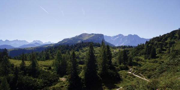 Am Weg Richtung Fellhorn Blick zur Steinplatte
