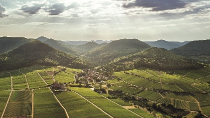 Leinsweiler