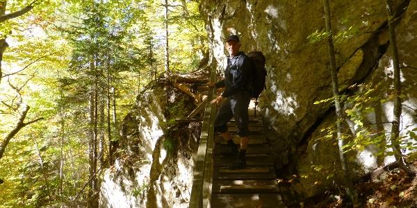 Zustieg zur Dolomitenhütte (1620 m)