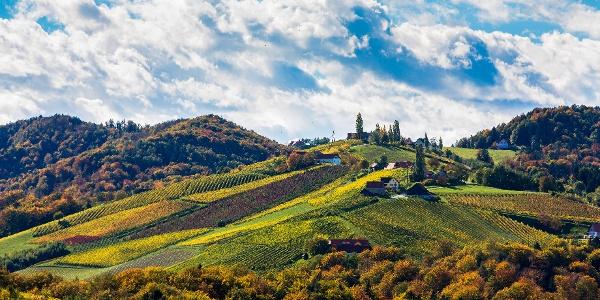 Blick auf die umgebenden Weinberge der Südsteiermark