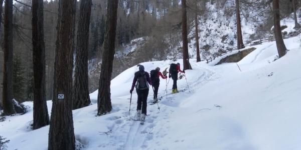 "Waldsteilstufe ""Lehrpfad Bergwerk"""