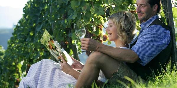 Rast im Weingarten