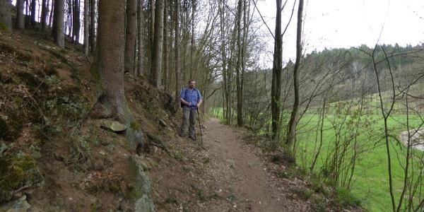 Waldweg durch das Perlbachtal
