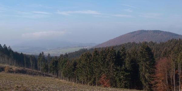 Bilck auf den Wilzenberg / Zwischen Almert und Schanze